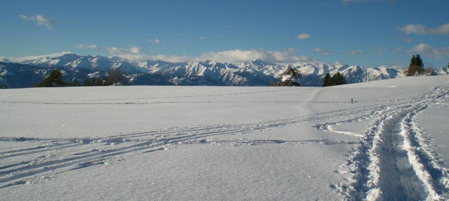 L'altopiano della Predaia ricoperto di neve bianchissima